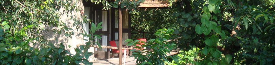 Luxury Resorts, Luxury Resorts Nagpur, Nagpur Resort, Nagpur Luxury Hotel, Nagpur Luxury Hotels, Luxury Wildlife Resort, Luxury Villas, Luxury Villas Holidays, Luxury holidays, Luxury Villa Holiday, Luxury Holiday Resort, Luxury Holiday, Luxury Villa, Exclusive Villas, Luxury Accommodation Nagpur, Madhya Pradesh - India